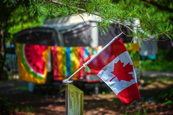 移民故事|老移民親述,還原最真實的加拿